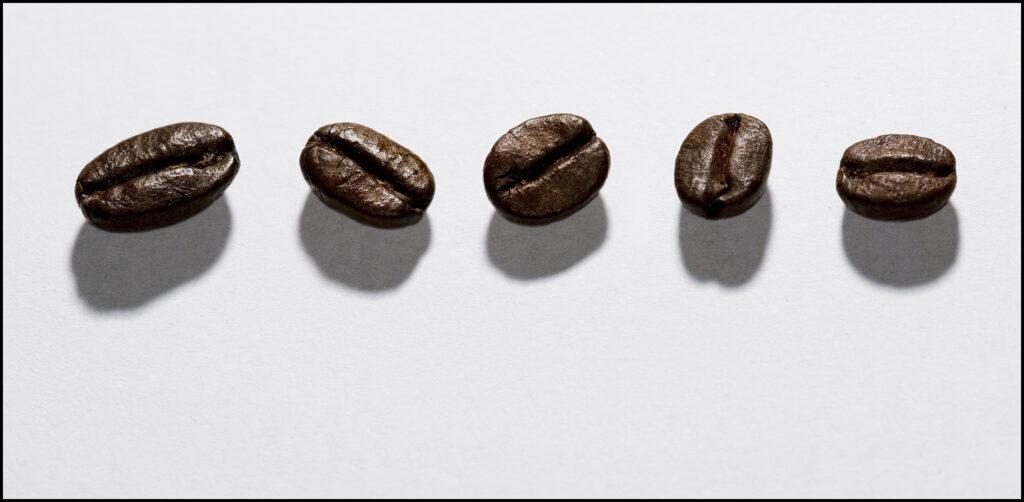 5 beans copy