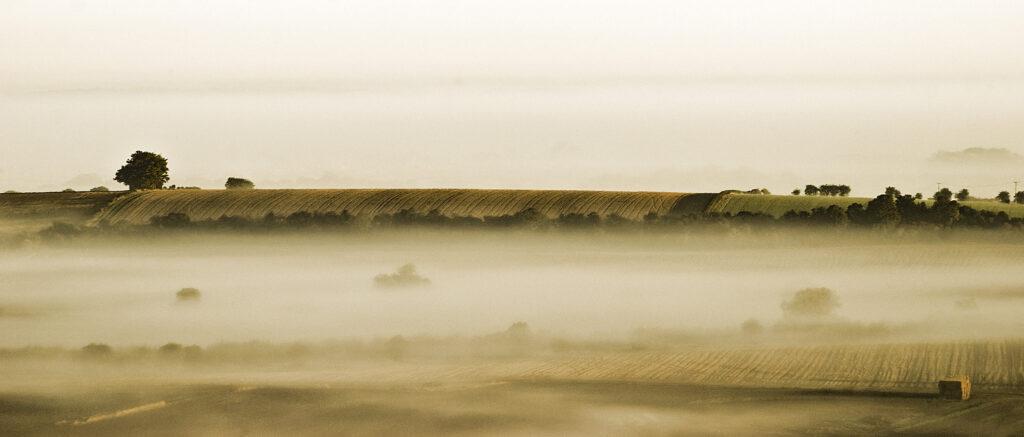 White Hill Mist 2